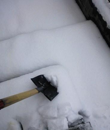 snow-3.jpg