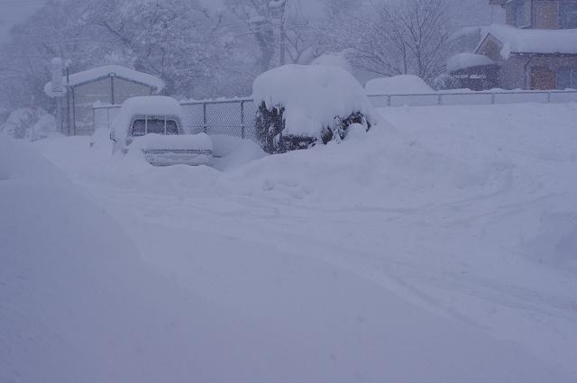 resize雪