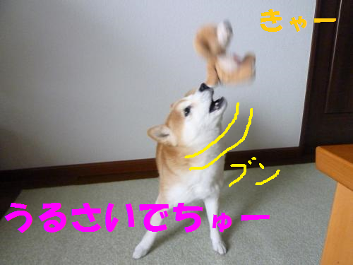 14020611.png