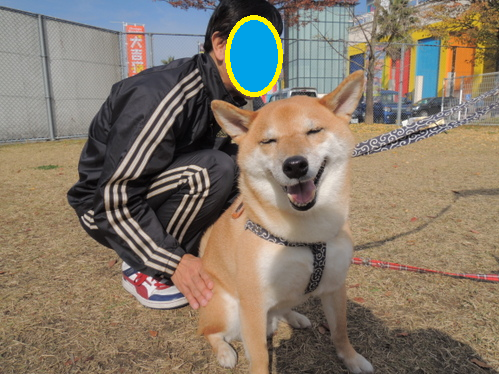 14112402.png