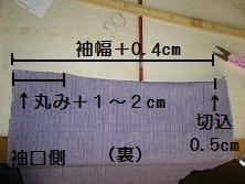 20110608d.JPG