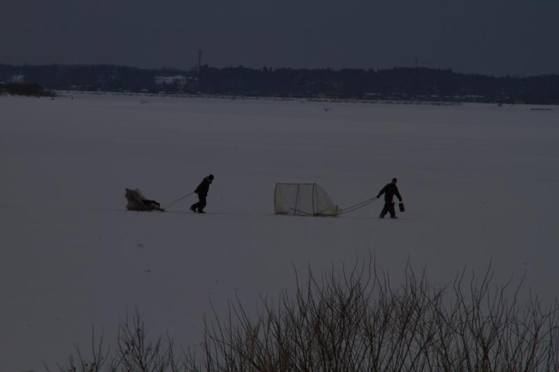 ワカサギ釣り2