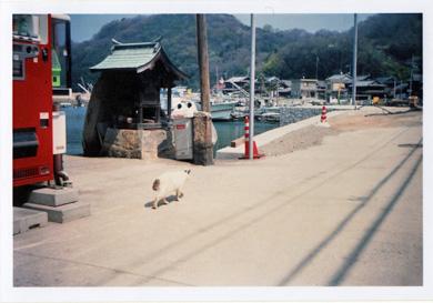 真鍋島景色4
