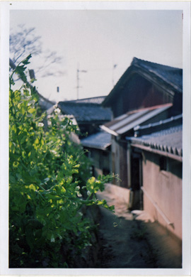 真鍋島景色2