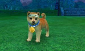 dogs0547.jpg
