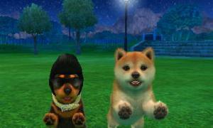 dogs0549.jpg