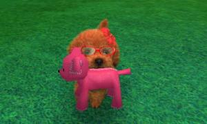 dogs0550.jpg