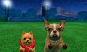 dogs0552.jpg
