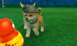 dogs0553.jpg