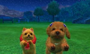 dogs0554.jpg