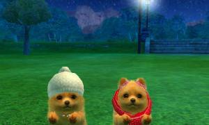 dogs0566.jpg