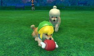 dogs0581.jpg