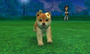 dogs0588.jpg