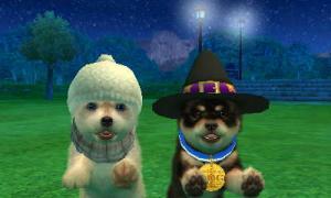 dogs0598.jpg
