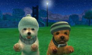 dogs0607.jpg