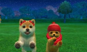 dogs0610.jpg