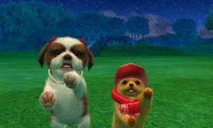 dogs0613.jpg