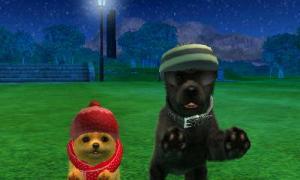 dogs0617.jpg