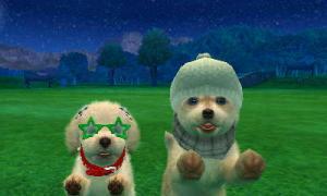dogs0626.jpg