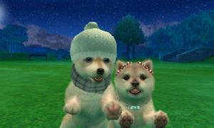 dogs0631.jpg