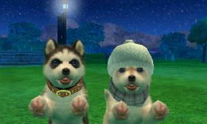 dogs0634.jpg