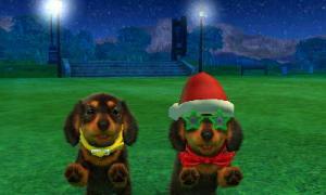 dogs0635.jpg