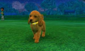 dogs0636.jpg