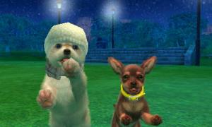dogs0637.jpg