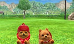 dogs0639.jpg