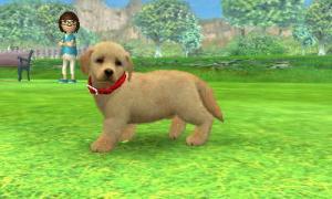 dogs0642.jpg