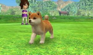 dogs0643.jpg
