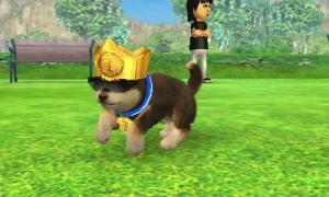dogs0645.jpg