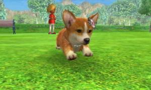 dogs0647.jpg