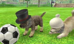 dogs0648.jpg