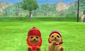 dogs0649.jpg