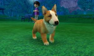 dogs0657.jpg