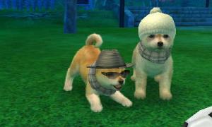 dogs0658.jpg