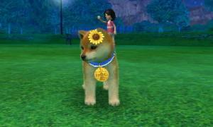 dogs0662.jpg