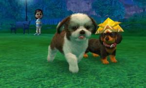 dogs0666.jpg