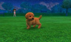 dogs0667.jpg