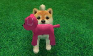 dogs0671.jpg