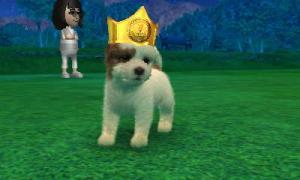dogs0673.jpg