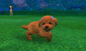 dogs0683.jpg