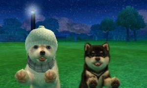 dogs0684.jpg