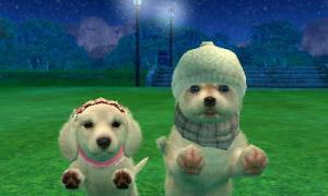 dogs0700.jpg