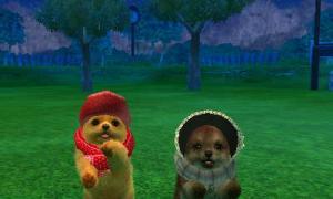 dogs0711.jpg