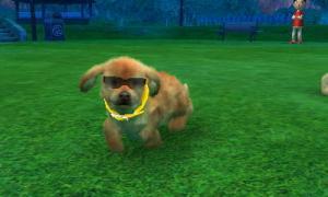 dogs0712.jpg