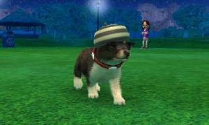 dogs0713.jpg
