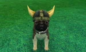 dogs0719.jpg