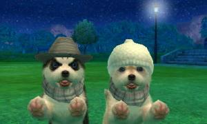 dogs0721.jpg